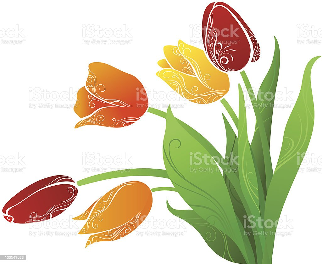 Tulips royalty-free tulips stock vector art & more images of abstract
