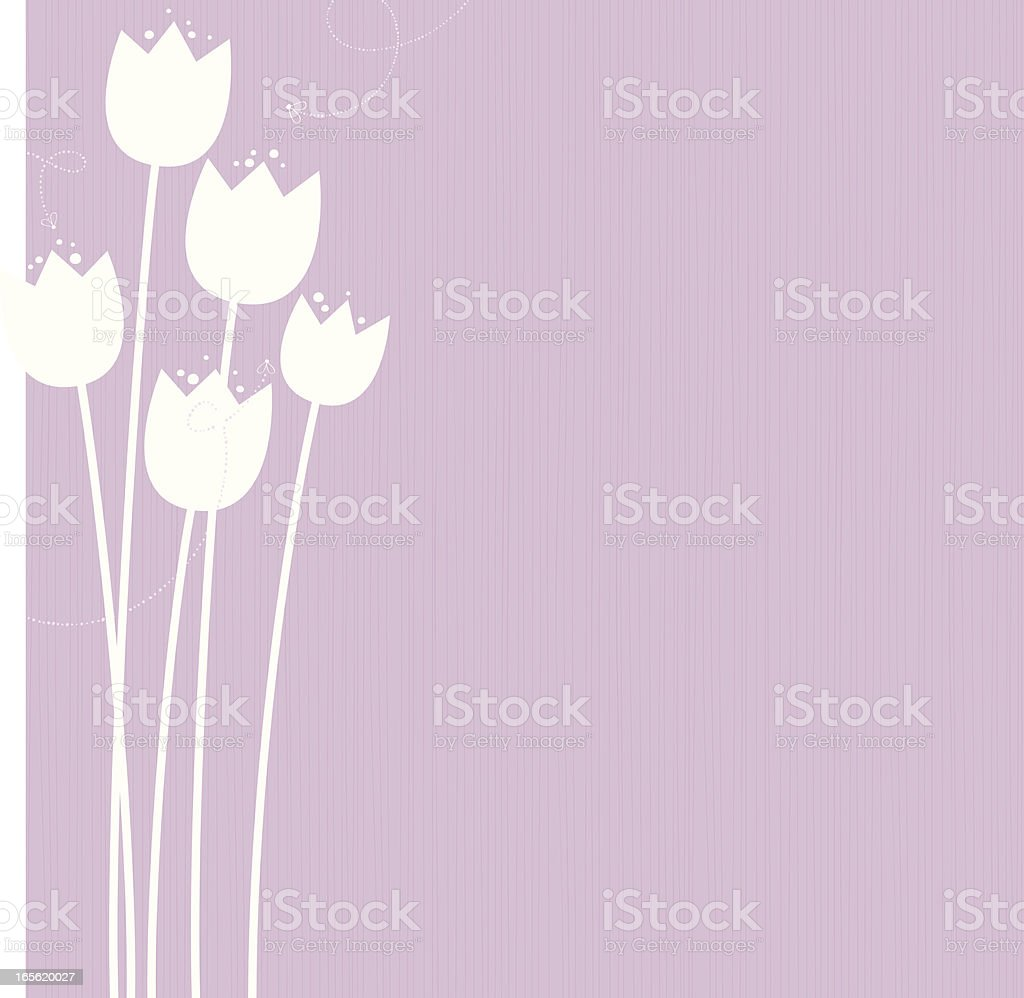 Tulips vector art illustration