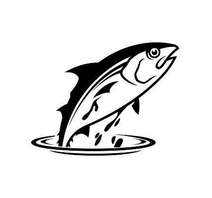 Tuna fish jumping out of the water - cut out vector icon