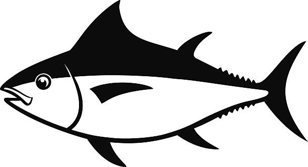 Best Yellowfin Tuna Illustrations, Royalty-Free Vector ...