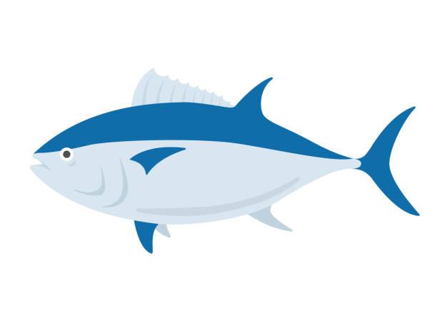 tuna tuna dorsal fin stock illustrations