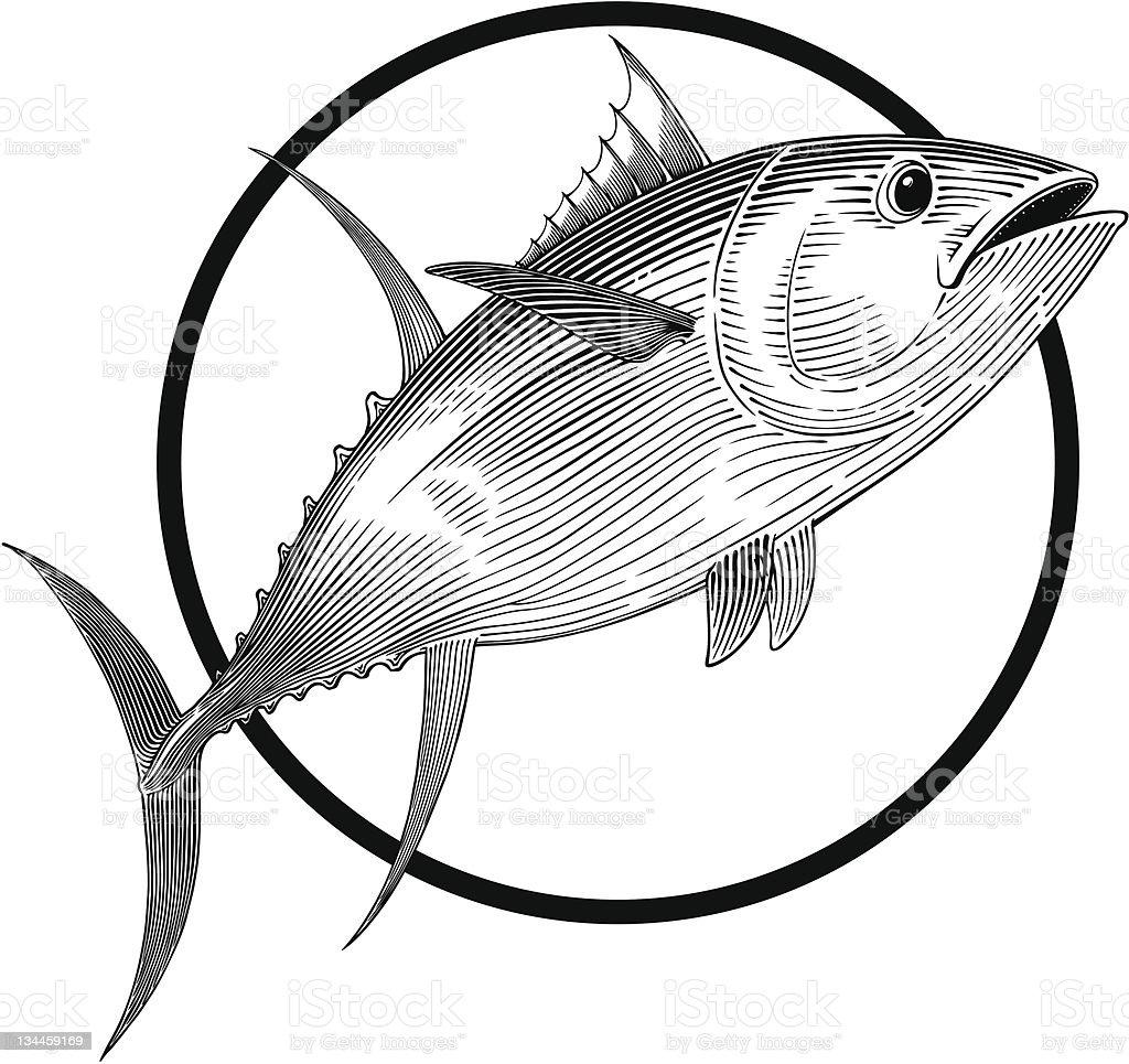 Tuna royalty-free tuna stock vector art & more images of animal