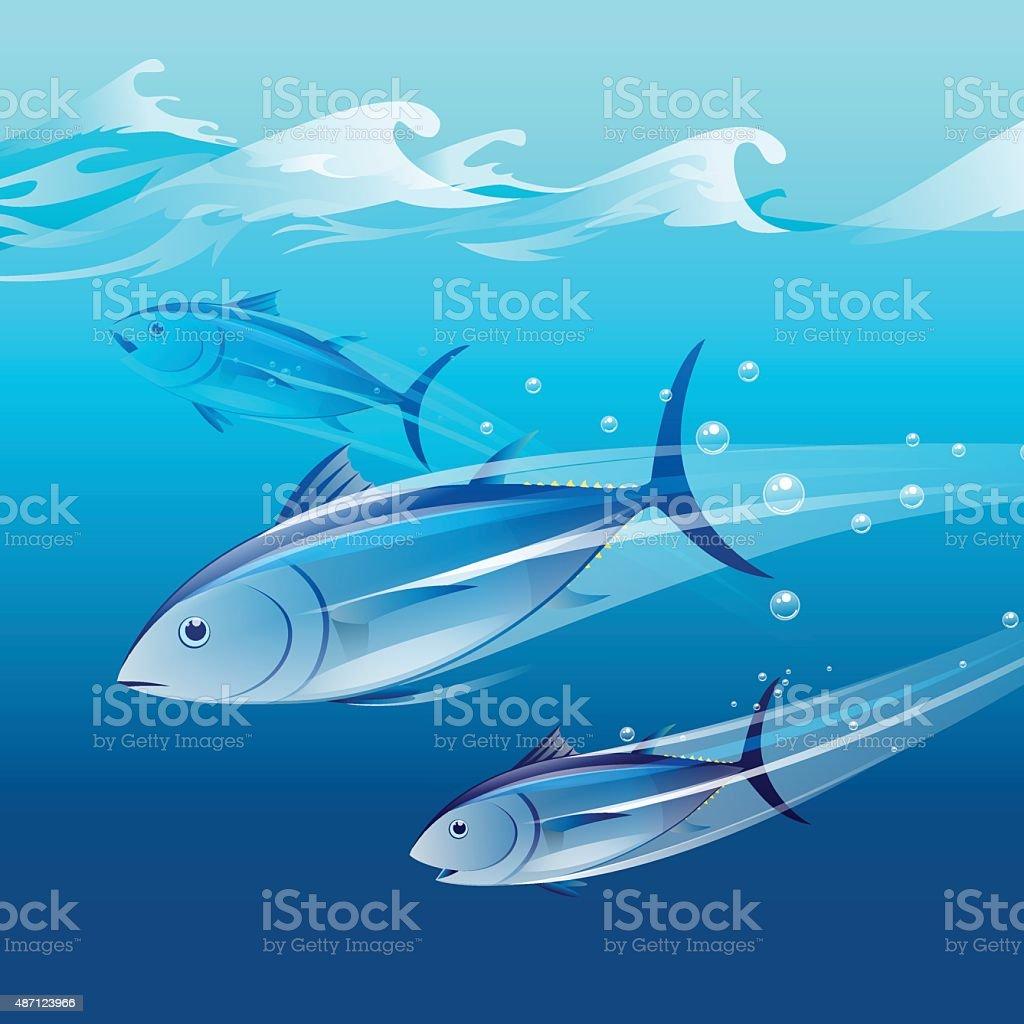 tunafish vector art illustration