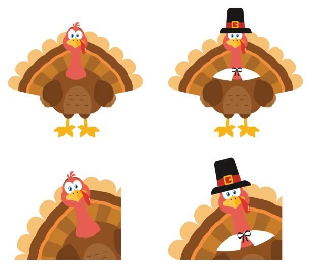 turkey bird cartoon mascot character. set collection - thanksgiving turkey stock illustrations