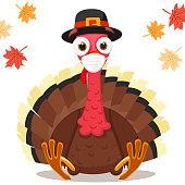 Turkey bird sitting in a medical mask, coronavirus concept. Thanksgiving Day