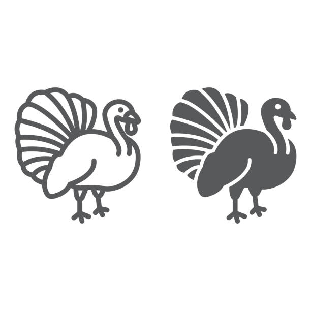 Turkey bird line and glyph icon, animal and farm, poultry sign, vector graphics, a linear pattern on a white background. Turkey bird line and glyph icon, animal and farm, poultry sign, vector graphics, a linear pattern on a white background, eps 10. turkey stock illustrations