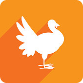 Vector illustration of an orange turkey icon in flat style.