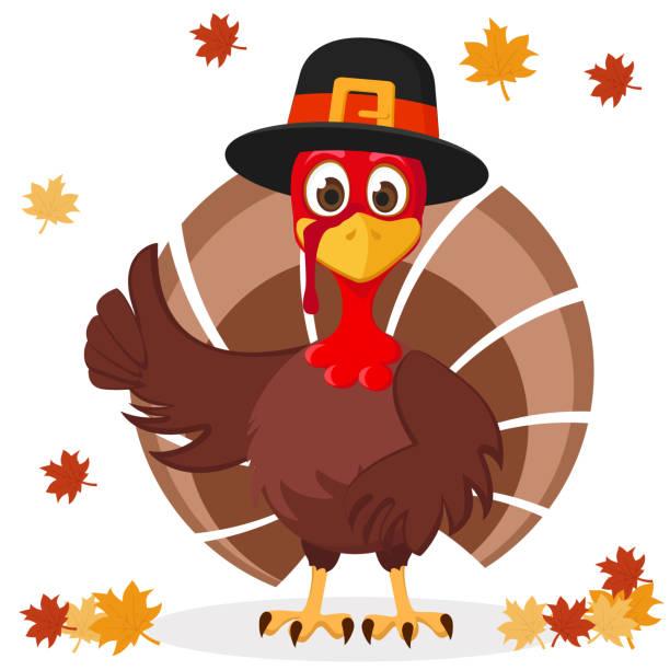 die türkei in hut zeigt wie auf einem weißen mit herbstblättern. thanksgiving-tag. - maul stock-grafiken, -clipart, -cartoons und -symbole