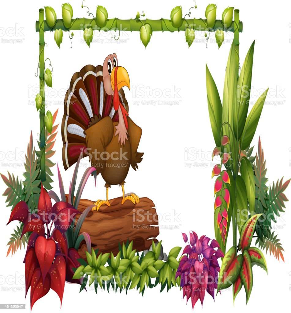 Turkey in the garden royalty-free turkey in the garden stock vector art & more images of animal