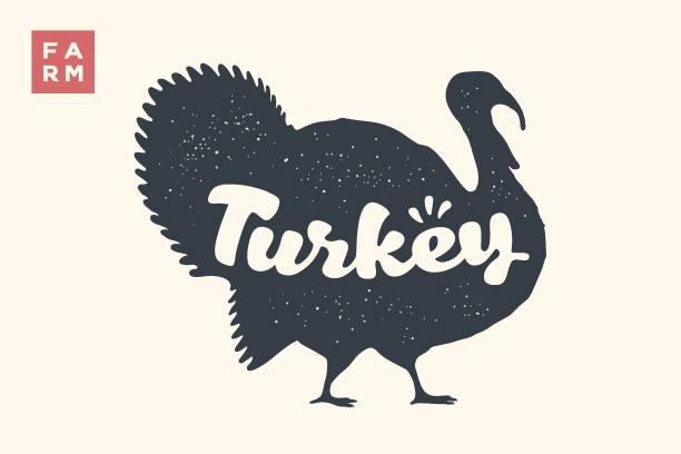 turkey. lettering, typography. animal silhoutte turkey and lettering turkey - turkey stock illustrations