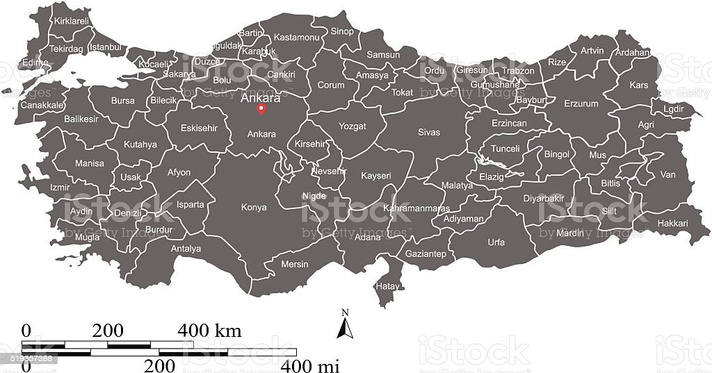 Turkey map vector outline with scales and states or provinces - Royalty-free Afbeelding vectorkunst