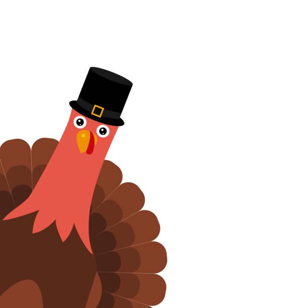turkey pilgrimin on thanksgiving day - thanksgiving turkey stock illustrations