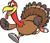Turkey Run