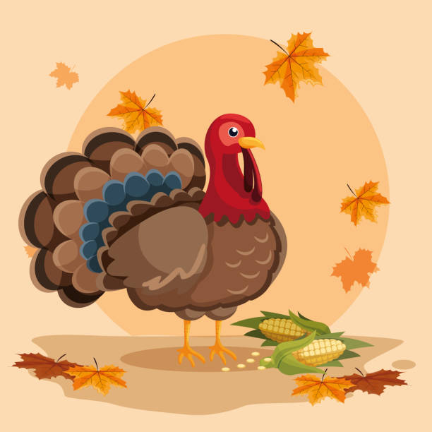 turkey with cobs of thanksgiving day turkey with cobs of thanksgiving day vector illustration design turkish stock illustrations