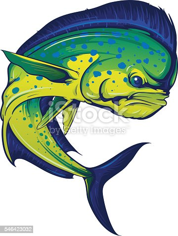 Vector illustration of a turning mahi mahi, or dorado fish in full color. File includes layered artwork for easy customization.