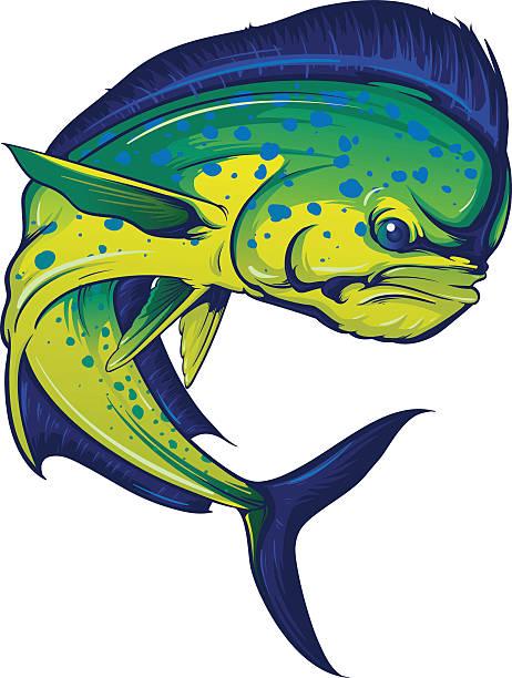 Turning Mahi Mahi vector art illustration