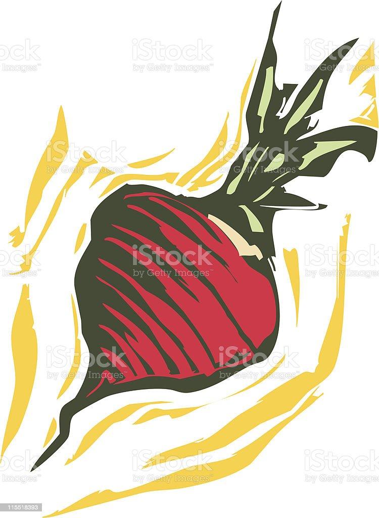 Turnip royalty-free turnip stock vector art & more images of beet