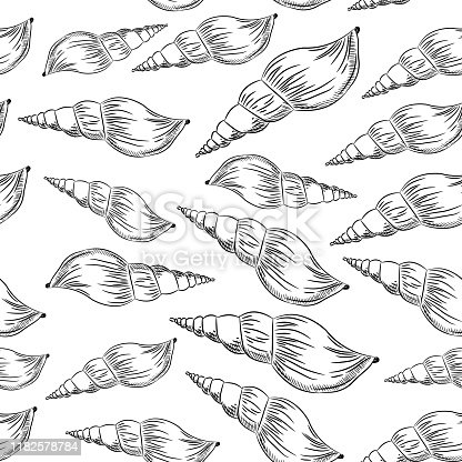 Turrid, plural turrids, predatory sea snails, marine gastropod mollusks in the family Turridae. Sketch black contour isolated on white background. Can be used for fabrics, wallpapers. Vector illustration