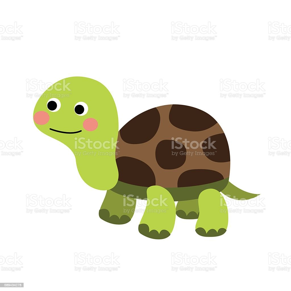Turtle animal cartoon character vector illustration.