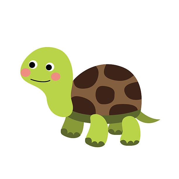 turtle animal cartoon character vector illustration. - turtle stock illustrations