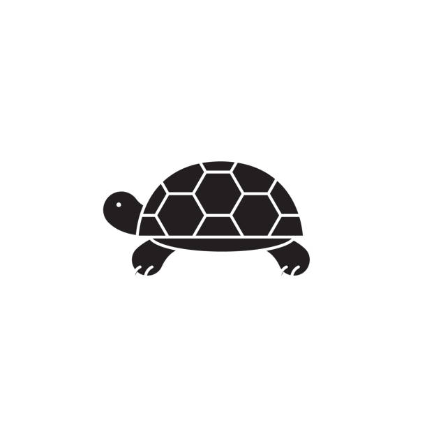 illustrazioni stock, clip art, cartoni animati e icone di tendenza di turtle black vector concept icon. turtle flat illustration, sign - tartaruga
