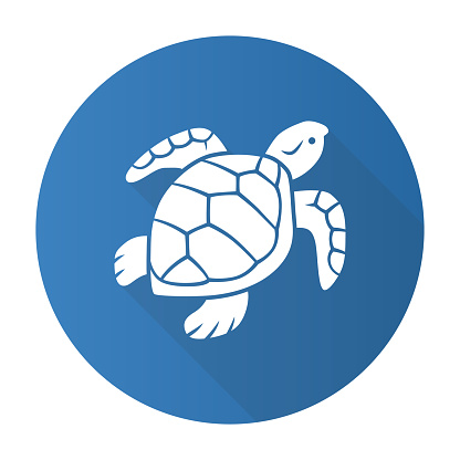 Turtle Blue Flat Design Long Shadow Glyph Icon Slow Moving ...
