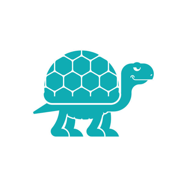 Cartoon Of The Slow Turtle Illustrations, Royalty-Free ...