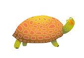 Isolated tortoiseshell clip art watercolor style. Vector illustration.