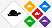 Turtle Color Diamond Vector Icon. The icon is black and is placed on a diamond vector button. The button is flat white color and the background is light. The composition is simple and elegant. The vector icon is the most prominent part if this illustration. There are five alternate button variations on the right side of the image. The alternate colors are red, yellow, green, purple and blue.