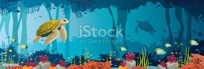 Turtle, coral reef, underwater cave and cave. Underwater sea.