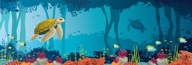 Turtle, coral reef, underwater cave and cave. Underwater sea. Yellow turtle, colorful coral reef, fishes and underwater cave on a blue sea. Ocean wildlife. Nature panoramic vector illustration. marine life stock illustrations