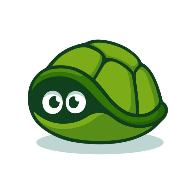 Turtle hiding in shell Cartoon turtle afraid to come out of its shell. Cute hiding tortoise with scared eyes. Isolated vector clip art illustration. turtle stock illustrations