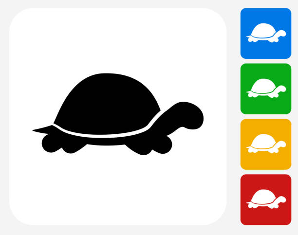 Turtle Icon Flat Graphic Design Turtle Icon. This 100% royalty free vector illustration features the main icon pictured in black inside a white square. The alternative color options in blue, green, yellow and red are on the right of the icon and are arranged in a vertical column. turtle stock illustrations