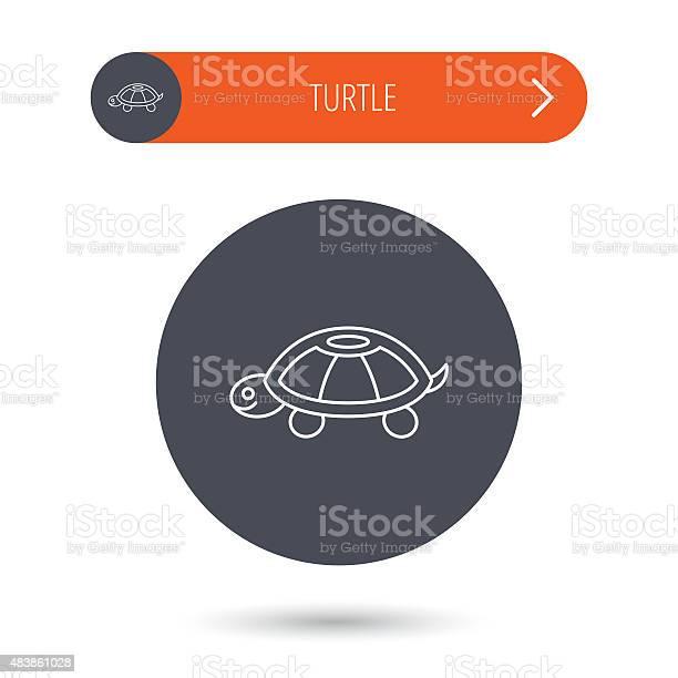 Turtle icon tortoise sign vector id483861028?b=1&k=6&m=483861028&s=612x612&h=n4n14bbasbwm87qaqytj5cgevs4sxmdtfwqzzxm7lya=