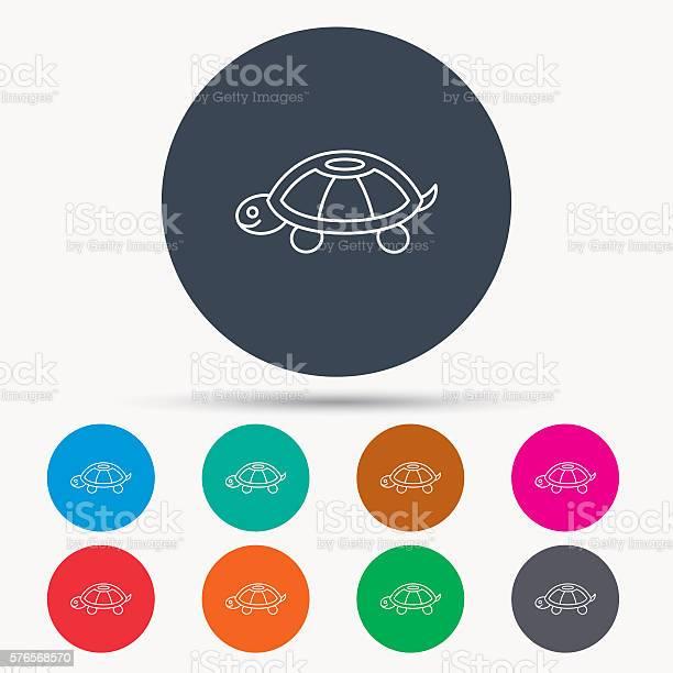 Turtle icon tortoise sign vector id576568570?b=1&k=6&m=576568570&s=612x612&h=41atjbgdqd r0q4oshbx3 wwhcuw molzligwjfey a=