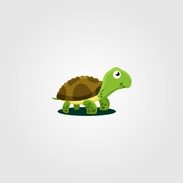 Turtle Logo Design Illustration Template vector art illustration