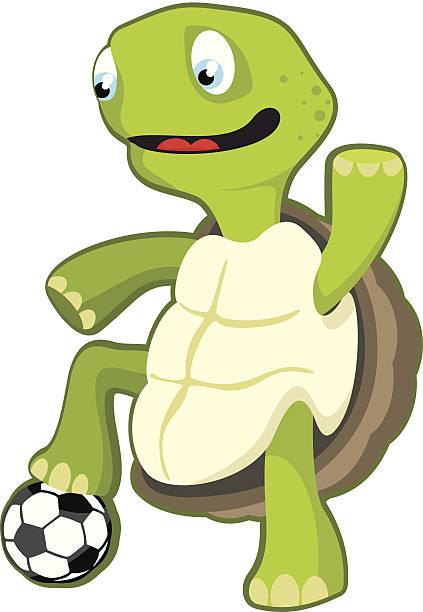 turtle playing football - lepro stock illustrations