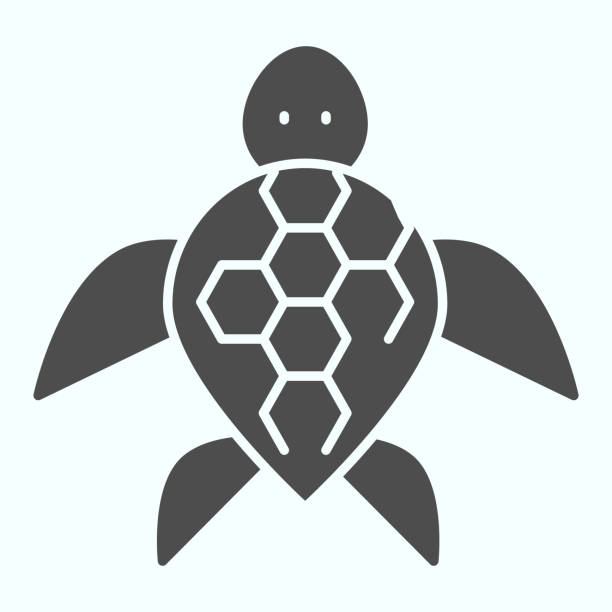 Turtle solid icon. Ocean or sea kareta tortoise illustration isolated on white. Marine turtle-shell animal glyph style design, designed for web and app. Eps 10. Turtle solid icon. Ocean or sea kareta tortoise illustration isolated on white. Marine turtle-shell animal glyph style design, designed for web and app. Eps 10 amphibians stock illustrations