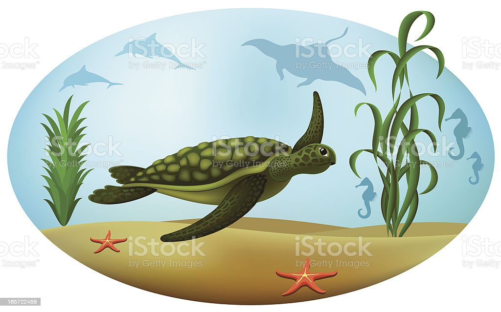 Turtle royalty-free turtle stock vector art & more images of algae