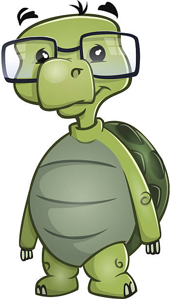 72 Cartoon Turtle With Glasses Illustrations Royalty Free Vector