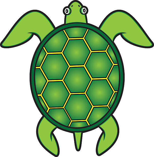 Royalty Free Green Sea Turtle Clip Art, Vector Images ...