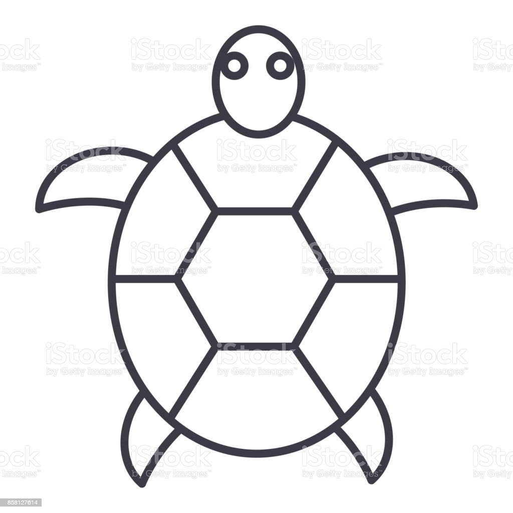 turtle vector line icon, sign, illustration on background, editable strokes vector art illustration