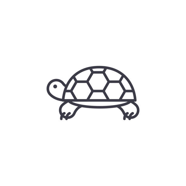 turtle vector line icon, sign, illustration on background, editable strokes - turtle stock illustrations