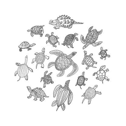 Turtles Doodle Set