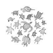 Turtles Doodle Set. Vector illustration.