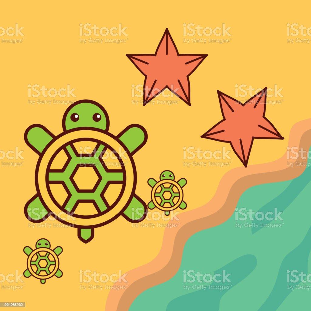 turtles starfish beach sea life cartoon - Royalty-free Animal stock vector