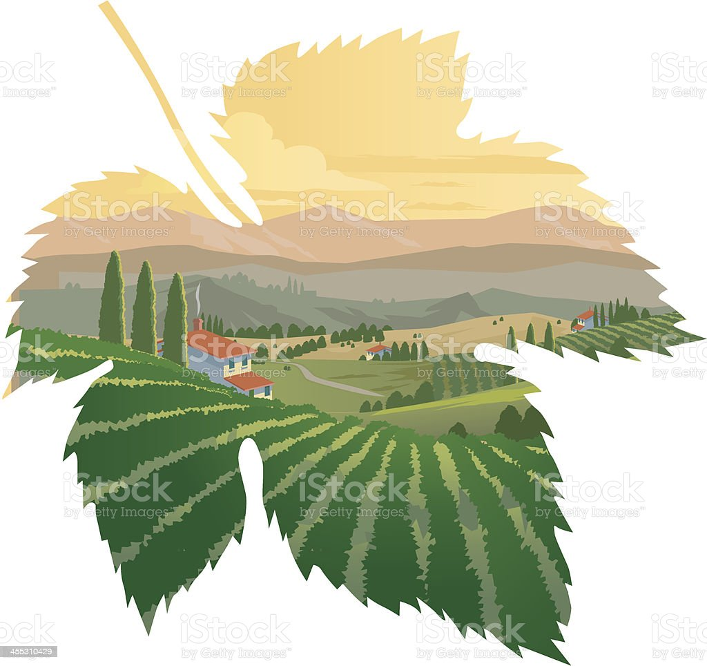 Tuscan Vineyards vector art illustration