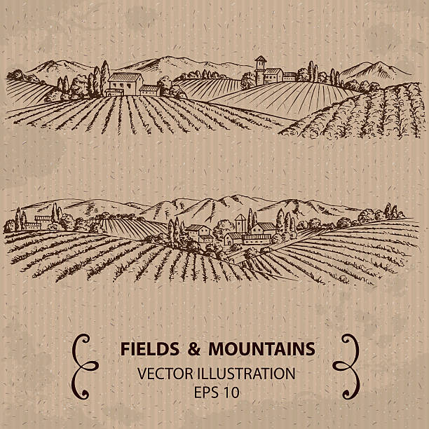 Tuscany Landscape with Fields and Mountains. Hand drawn Vector Illustration agricultural field stock illustrations