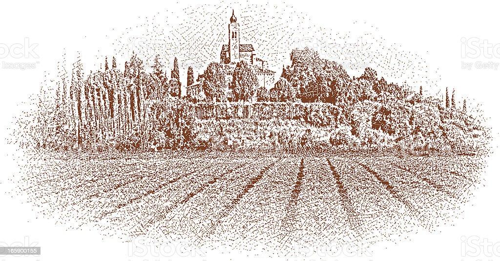Tuscany Vineyard vector art illustration