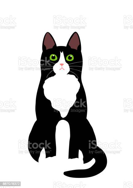 Tuxedo cat sitting vector id887078372?b=1&k=6&m=887078372&s=612x612&h=hxja7katmxnb aivatpqhgbson19arjto3nzcgs6ro4=